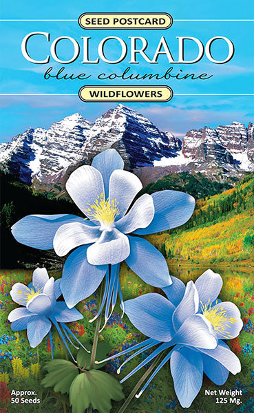 Colorado Columbine Seeds – Shop Online Now | Created By Nature