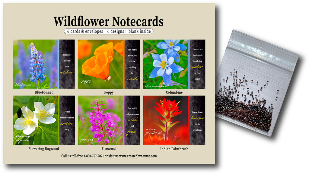 Inspirational Wildflower Seeds & Notecards - Boxed Assortment of 6