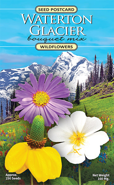 Waterton Glacier Bouquet Seed Packet