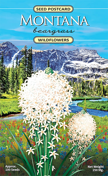 Montana Beargrass Seed Packet