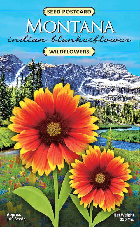 Montana Indian Blanketflower Seed Packet