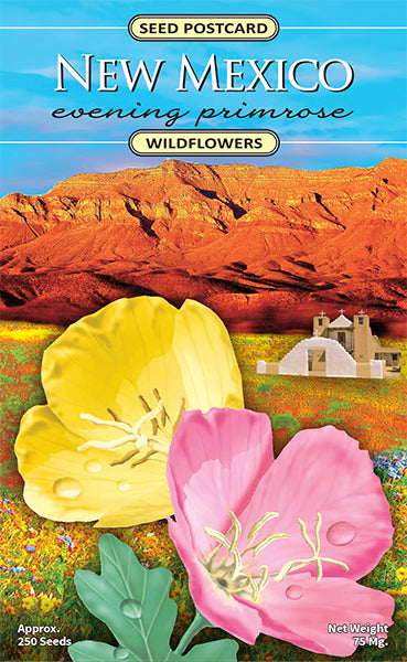 New Mexico Evening Primrose Seed Packet