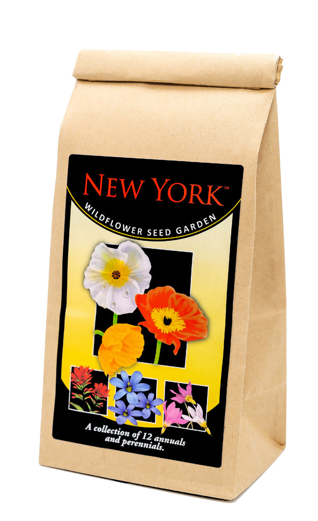 New York Seed Mix