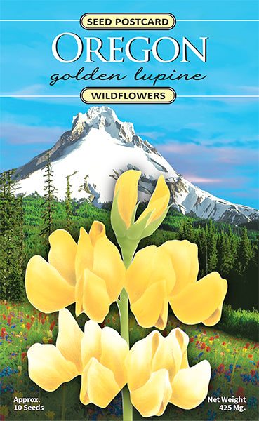 Oregon Golden Lupine Seed Packet