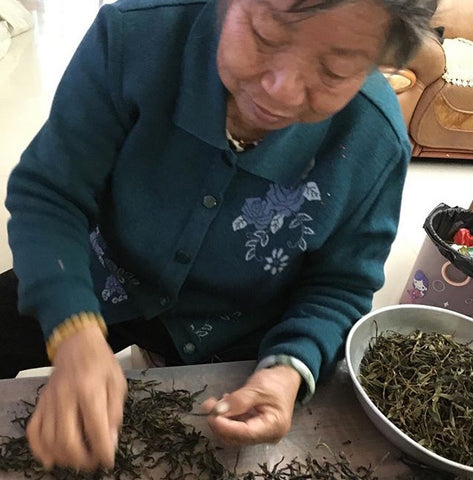 An elderly woman sorts finished tea leaves