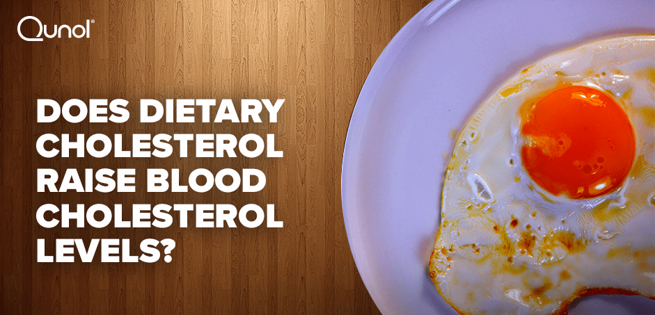 Does Dietary Cholesterol Raise Blood Cholesterol Levels?