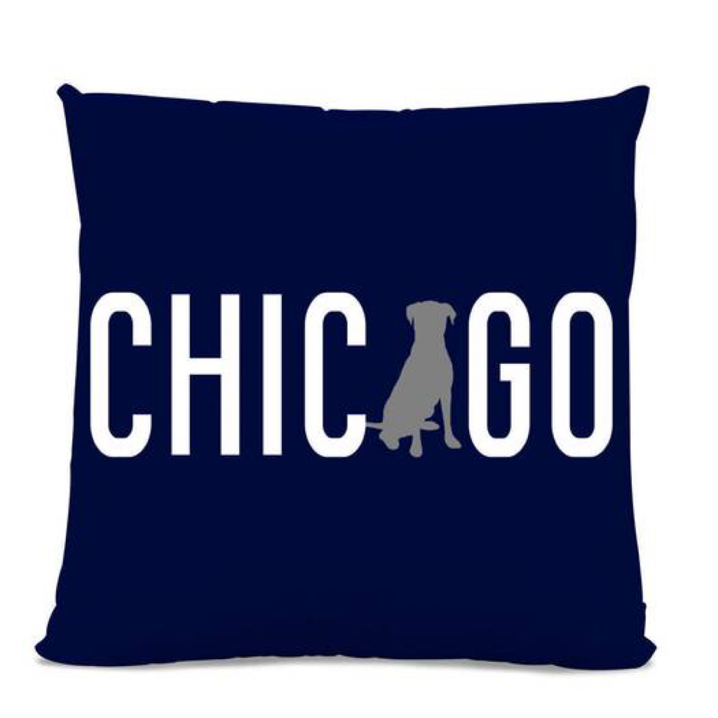 Chicago Lab Pillow