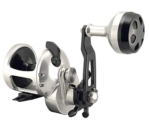 Accurate Tern 500 6:1 Lefty Star Drag Reel