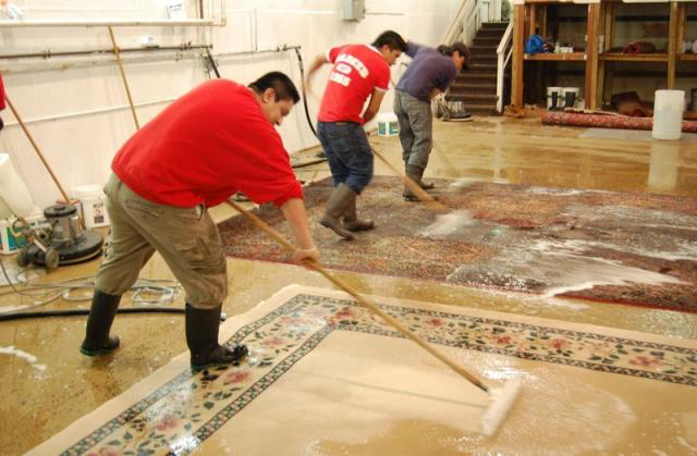 Woven Passion Rugs - Cleaning - Deep Clean Rug