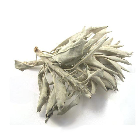 White Sage- Loose- 1 oz
