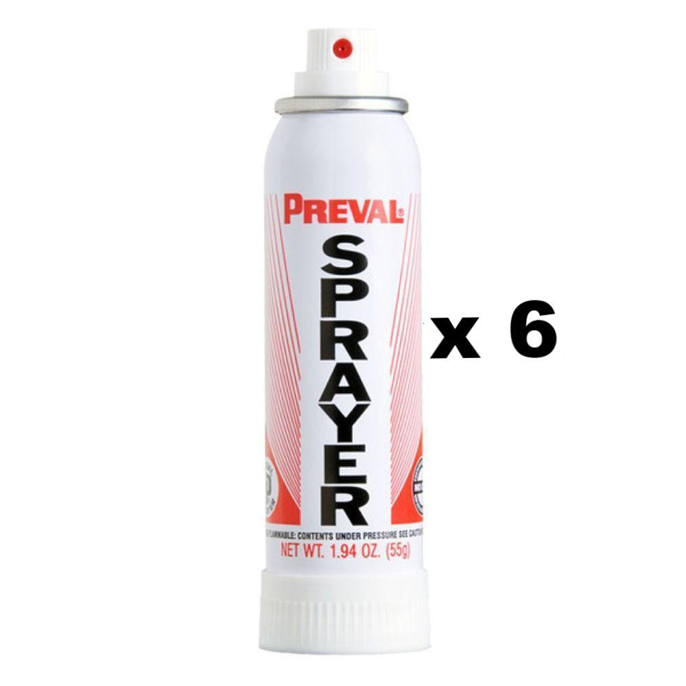 Preval Replacement Compressor Power Unit Paint Spray Gun 55g x 6