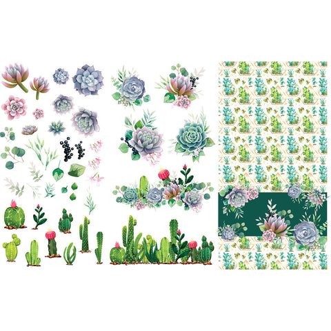 Belles & Whistles Transfer - Cacti & Succulents