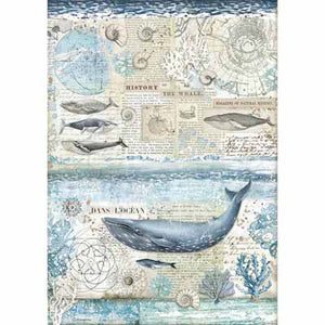 A3 Rice Paper - History of a Whale