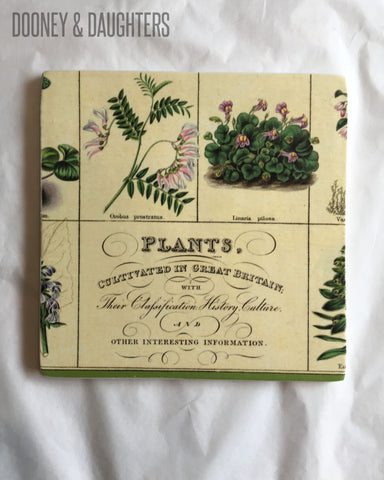 Vintage Botanical Tile Large