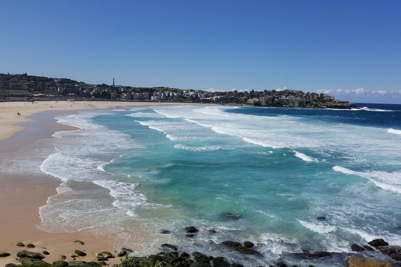 Family Friendly Beaches in Sydney