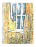 Bird Print - Chicken at Window #001