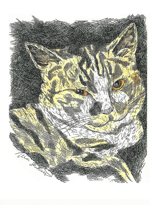 Animal Print - Calico Cat #052