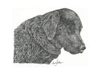 Animal Print - Black Lab #065