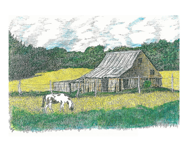 Barn Art - Barn with Pinto  #020