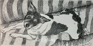 Animal Print - Rat Terrier Laying #213
