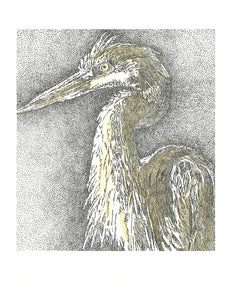 Bird Print - Great Blue Heron #095