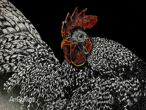 Bird Print - Dominecker Rooster #310