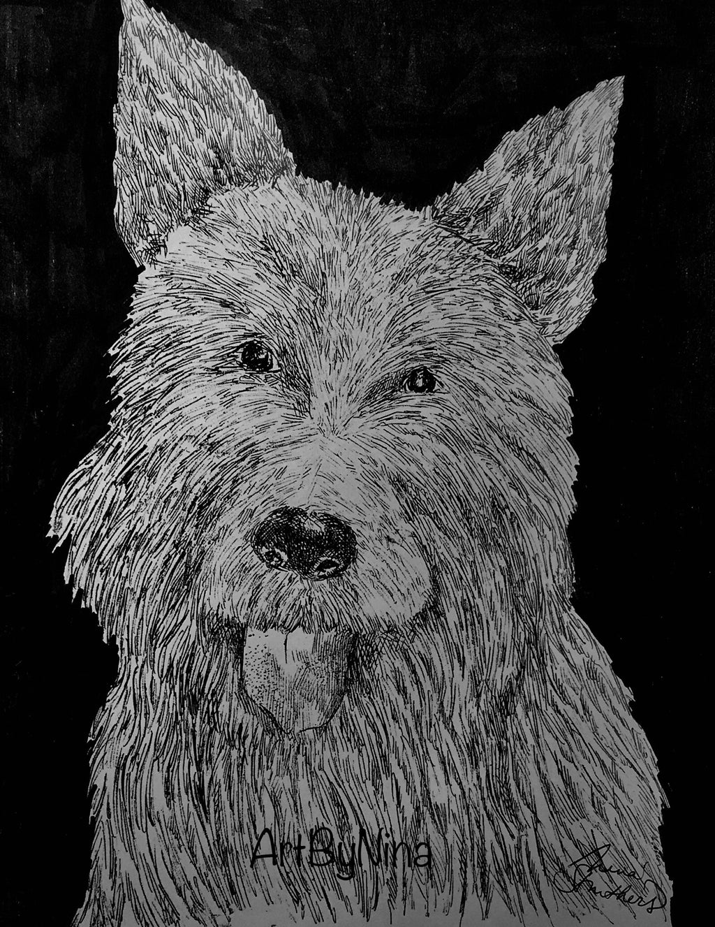 Animals - Westie Terrier #306