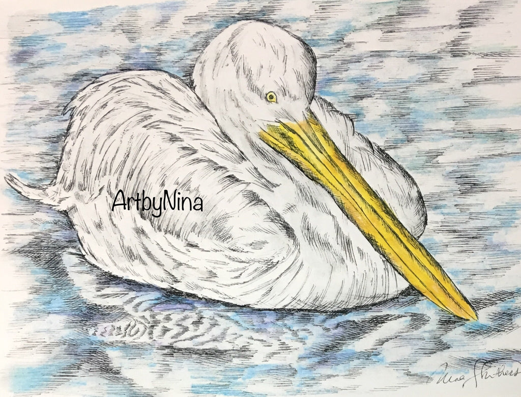 Bird Print - Floating Pelican #104