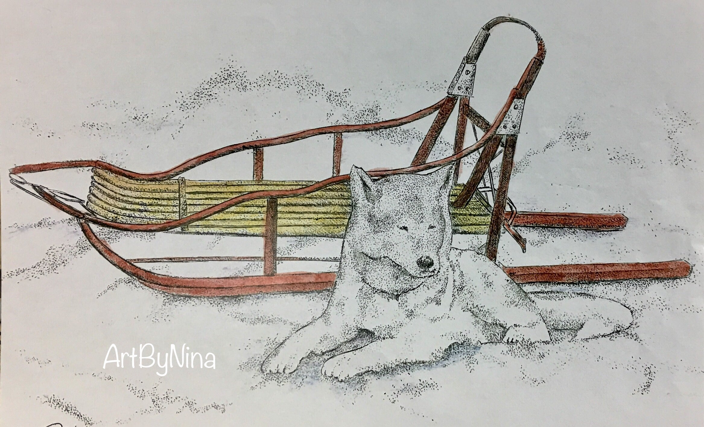 Animal Print - Husky and Sled #212