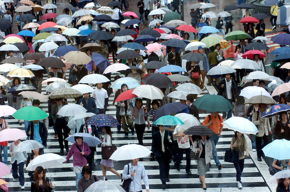Crowds holding umbrellas passing trough the zebra crossing