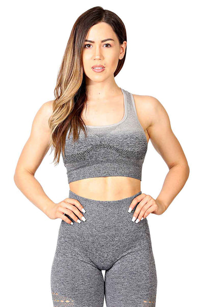 ENLIGHTEN OMBRE SEAMLESS SPORTS BRA - FLEX-N-FLEX