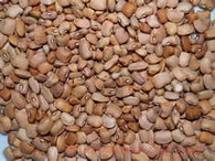 Brown / Red Beans-Dried Beans, Grains & Rice-BIFA Store-bifastore