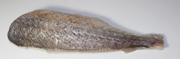 Frozen Croaker Fish (headless)-Frozen Meat-BIFA Store-bifastore