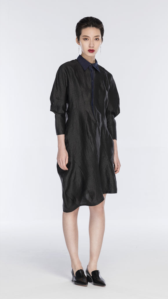 Elena Long-Sleeved Silk Shirt Dress