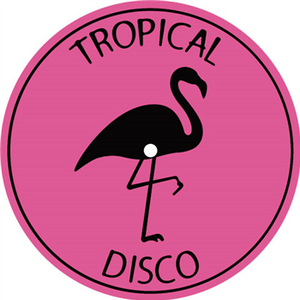 Various Artists -Tropical Disco Records, Vol. 16 !!