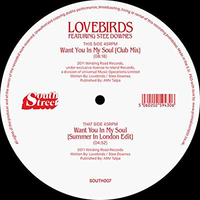 Lovebirds   [feat. Stee Downes -Want You In My Soul !!   [a must-have in any collection]
