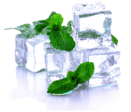 MENTHOL Browse our amazing menthol flavored eliquid. These juices give a huge hit with a hint of Ice. Shop now!