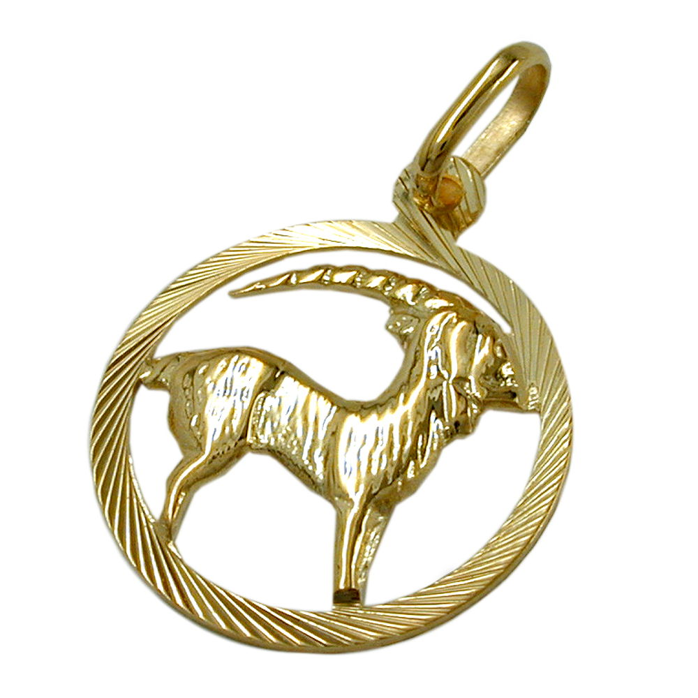pendant zodiac sign capricorn 9kt gold