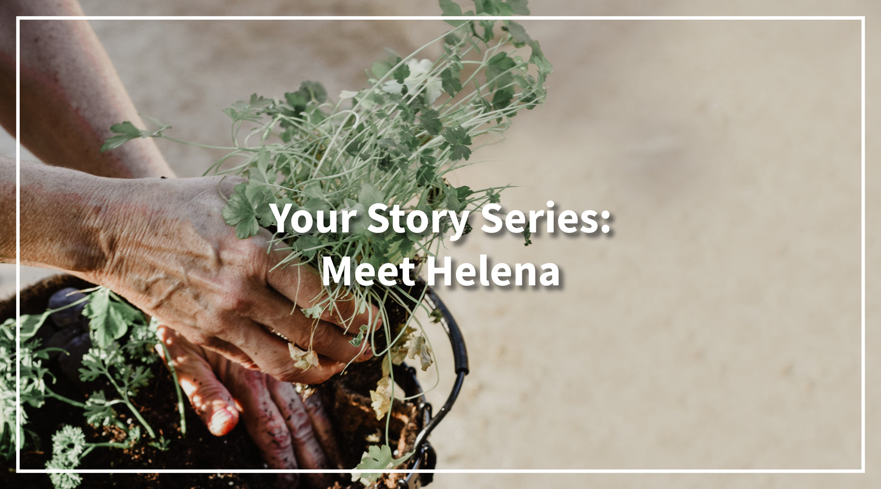 Solbari blog: Your Story Series: Meet Helena