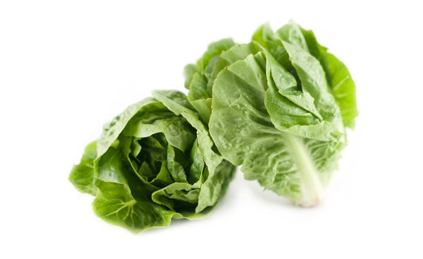 Baby cos - twin pack Green Lettuce - Wholesome Kitchen