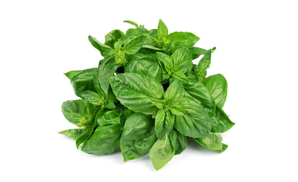 Sweet Basil - Wholesome Kitchen
