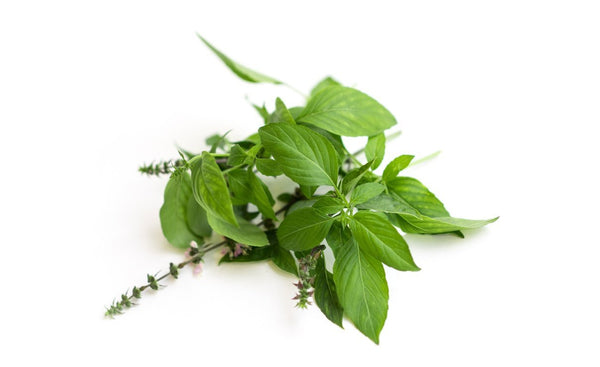 Thai Basil - Wholesome Kitchen