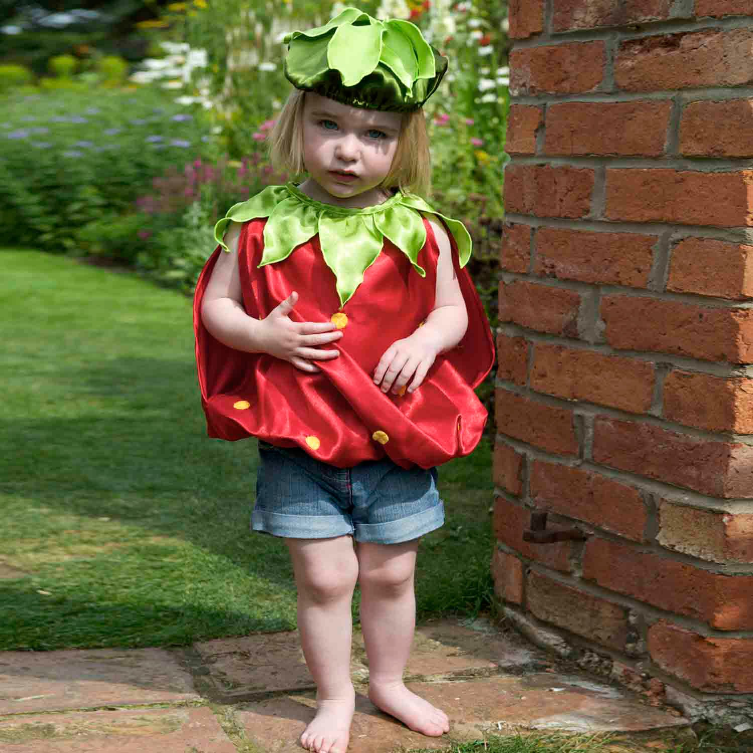 5f8befca9973 Baby   Toddler Strawberry Fancy Dress Costume – Lucy Locket Toys   Gifts