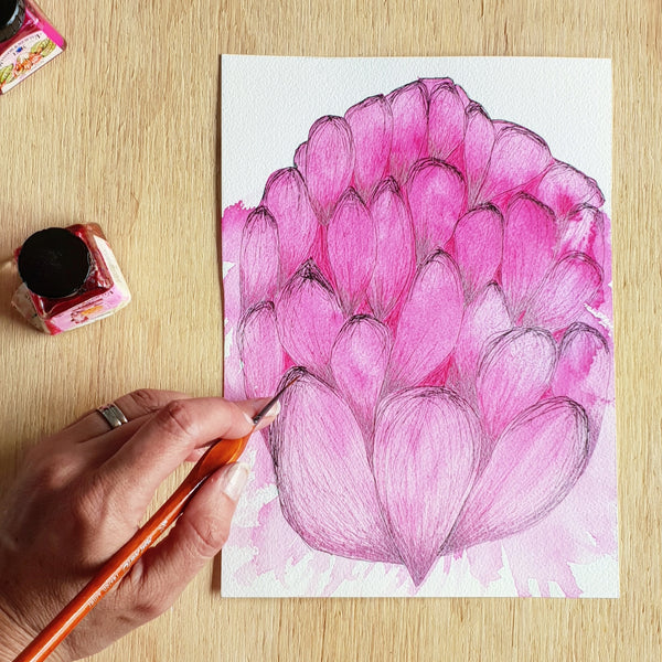 'Pink Waratah' archival quality modern floral art print