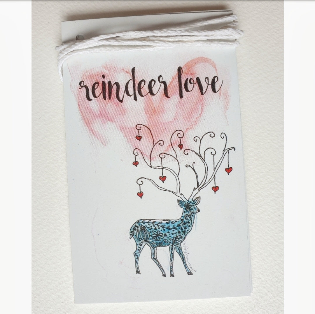 Christmas Reindeer Gift Tags Set Of 5