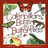 Take-Along Guide:  Caterpillars, Bugs, and Butterflies