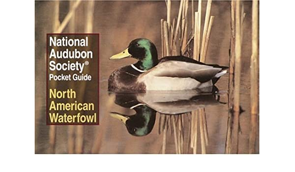 National Audubon Society Pocket Guide: North American Waterfowl