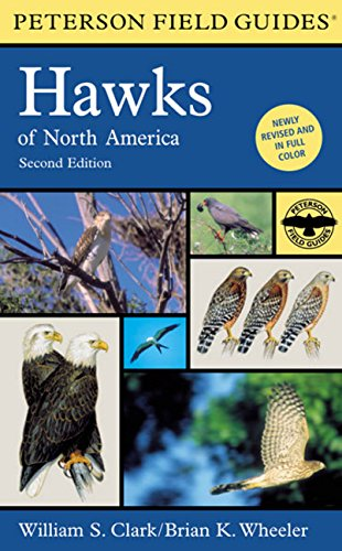 Peterson Field Guides: Hawks of North America