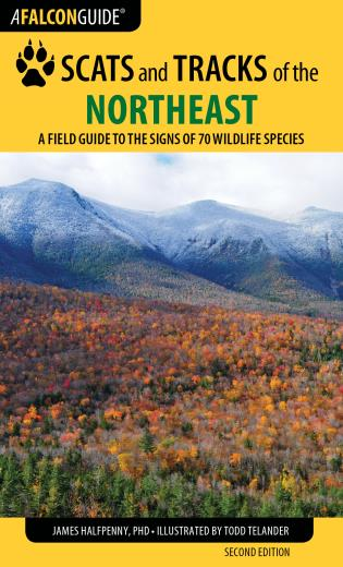 Falcon Guide: Scats and Tracks of the Northeast