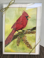 Anzelc Holiday Boxed Cards-Cardinal in Winter